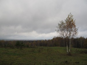 Поездка в Милёнки (осень, 2011)
