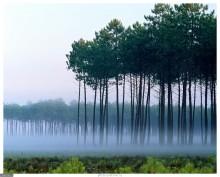 125844 1280x1024 - СветВМир.ру - Интересный познавательный журнал. Развитие познания - Великолепие природы 2