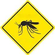 mosquito warning - СветВМир.ру - Интересный познавательный журнал. Развитие познания - Советы: как избавиться от комаров