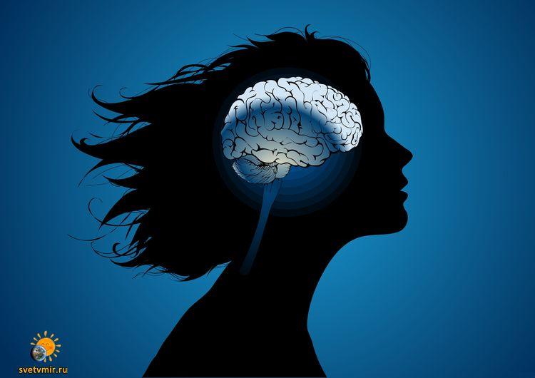 """""""...мало кто подозревает, что компьютер можно сравнить с протезом мозга"""""""