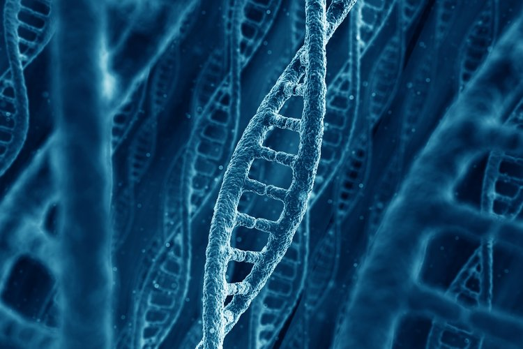 Ты своей речью влияешь на свою жизненную программу или как мат влияет на ДНК
