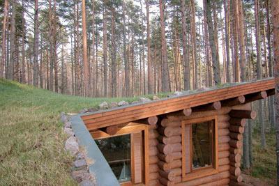 Дом с дерновой крышей