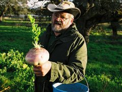 10 рекомендаций от Зеппа Хольцера или рассказ о поездке в поместье агронома-революционера