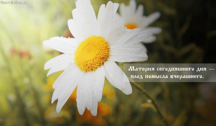 Материя сегодняшнего дня — плод помысла вчерашнего.
