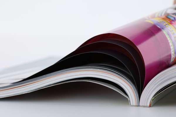 Эскиз бизнес-плана по созданию журнала «Зелёнка»