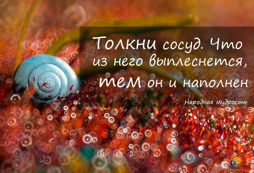 g - СветВМир.ру - Интересный познавательный журнал. Развитие познания - Тем и наполнен
