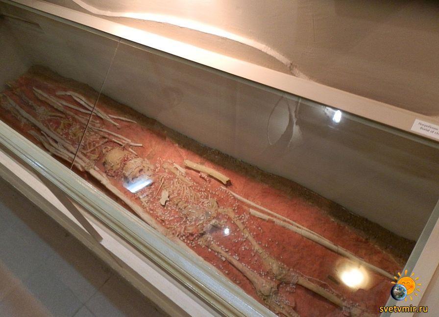 Сунгирь: Русь 25000 лет назад. Достояние планеты (2 видеоролика)