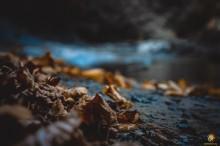 DSC04902 - СветВМир.ру | Познавательный журнал! - Путешествие по побережью Чёрного моря или Чаша любви, гора Ёжик, скала Парус и ванна Афродиты