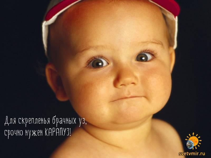 nastol.com - СветВМир.ру - Интересный познавательный журнал. Развитие познания - Для скрепленья брачных уз, срочно нужен КАРАПУЗ!