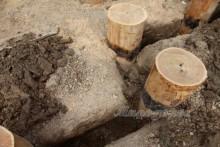 XuOeI3c2hew - СветВМир.ру - Интересный познавательный журнал. Развитие познания - Экологичный, натуральный фундамент в родовом поместье