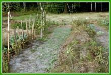JHMwNspDmL4 - СветВМир.ру - Интересный познавательный журнал. Развитие познания - Не тяжело ли работать на гектаре?