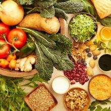 Ведрусский способ питания