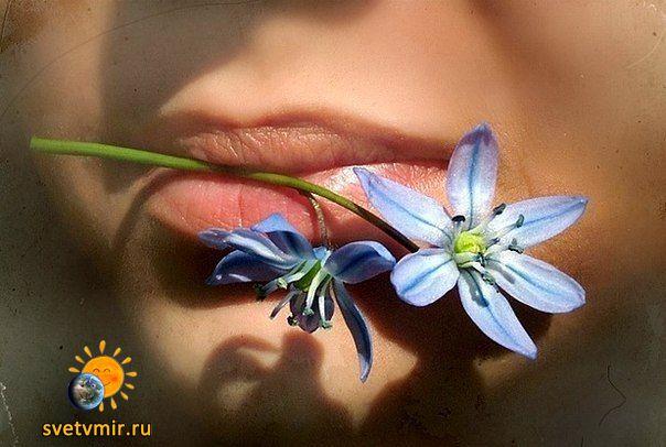 d4Mw866grIo - СветВМир.ру - Интересный познавательный журнал. Развитие познания - Делаем зубной порошок из трав своими руками