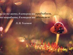 Важно направление, в котором мы движемся – Лев Толстой