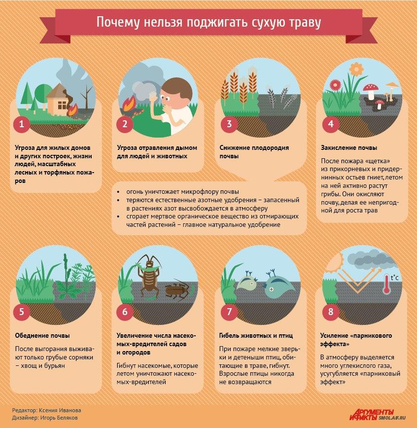 H4 PN1Zj XQ - СветВМир.ру - Интересный познавательный журнал. Развитие познания - Почему нельзя поджигать сухую траву? (картинка)