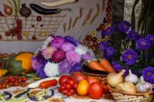 DSC01060 - СветВМир.ру - Интересный познавательный журнал. Развитие познания - Воронеж Город-Сад 05 сентября 2015