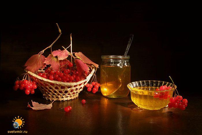 kalina s medom - СветВМир.ру | Познавательный журнал! - Как лечить кашель. 17 эффективных способов избавления от разных видов кашля