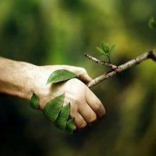 """Не вредите природе даже в """"мелочах"""""""