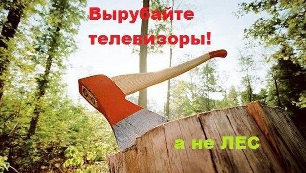 8gjO4kO3iwE - СветВМир.ру | Познавательный журнал! - Вырубайте телевизоры