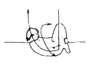 Белояр034