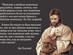 """Лев Толстой: """"Животное нужно жалеть так же, как и человека"""""""