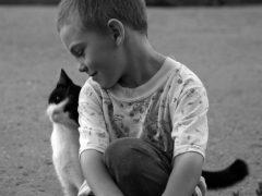 """""""Этому котенку нужен кто-то, кто бы понимал его, как ему тяжело, и кто бы его поддержал"""""""