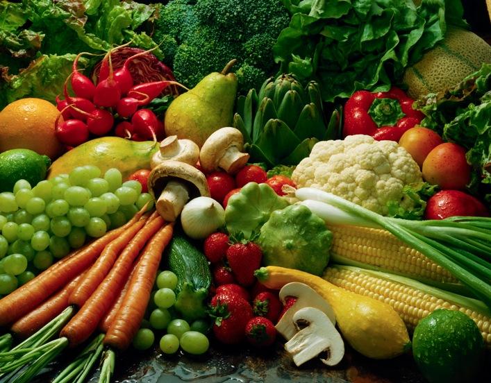 Сроки посадки и рассады некоторых овощей. Календарь посадки