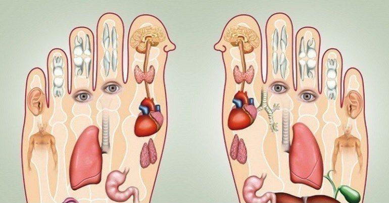 Массаж ног. Активные точки для массажа ног