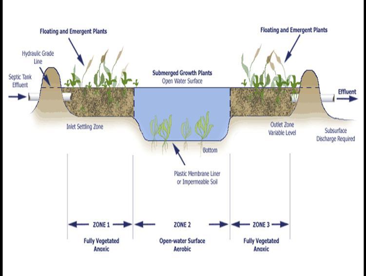 Очистка воды болотом