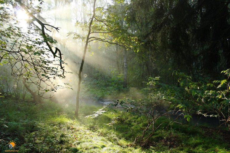 Великолепие природы, часть 6. Яркие пейзажи! 20 фотографий