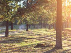 Великолепие природы, часть 5. Отличные пейзажи! 21 фотография