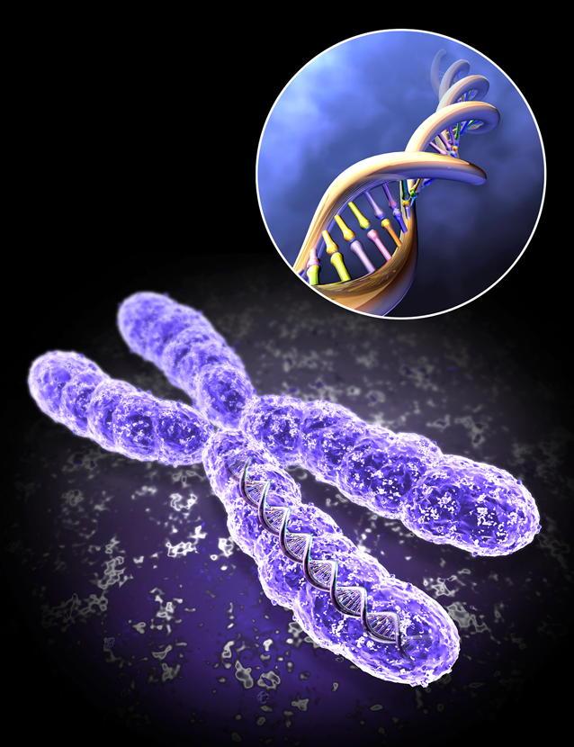 XHKpFCOiMPw - СветВМир.ру | Познавательный журнал! - Не убивайте матом хромосомы! Влияние мата на человека