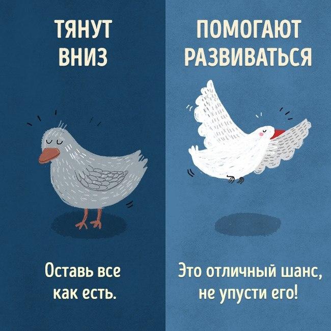 5eYGVJ5caBw - СветВМир.ру | Познавательный журнал! - Есть только два типа людей: одни тянут вниз, с другими можно свернуть горы