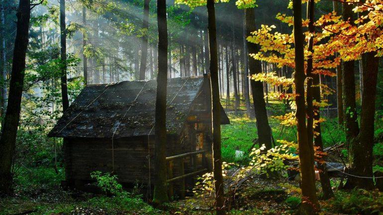 дом в лесу - притча про прораба