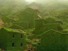 Заброшенная рыбацкая деревня в Китае, которую поглотила природа (7 фото)