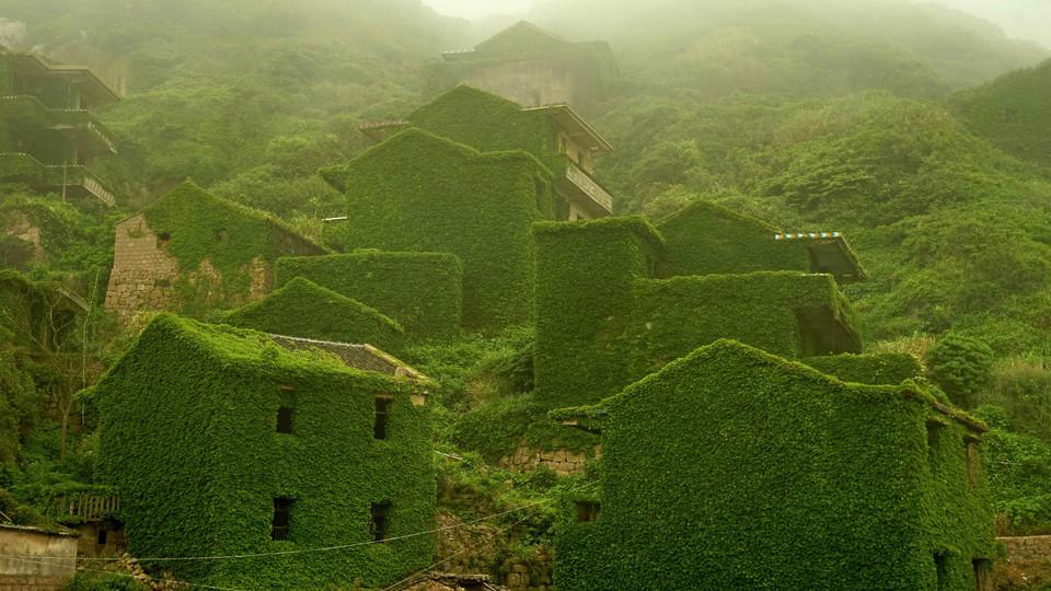 2d ktkpTURBXy8yNmVjMDcyMTRmZTNhYzM5NTNjZDhiZGUwODk2YmM5YS5qcGeSlQLNA8AAwsOVAgDNA8DCww - СветВМир.ру - Интересный познавательный журнал. Развитие познания - Заброшенная рыбацкая деревня в Китае, которую поглотила природа (7 фото)