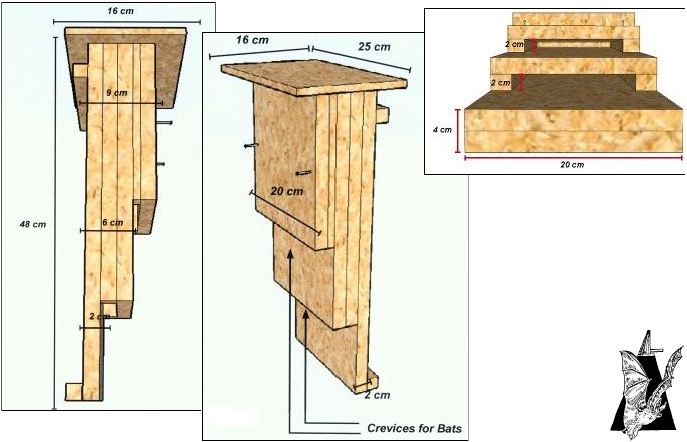 Польза летучих мышей. Чертежи домиков для летучих мышей (дуплянки)