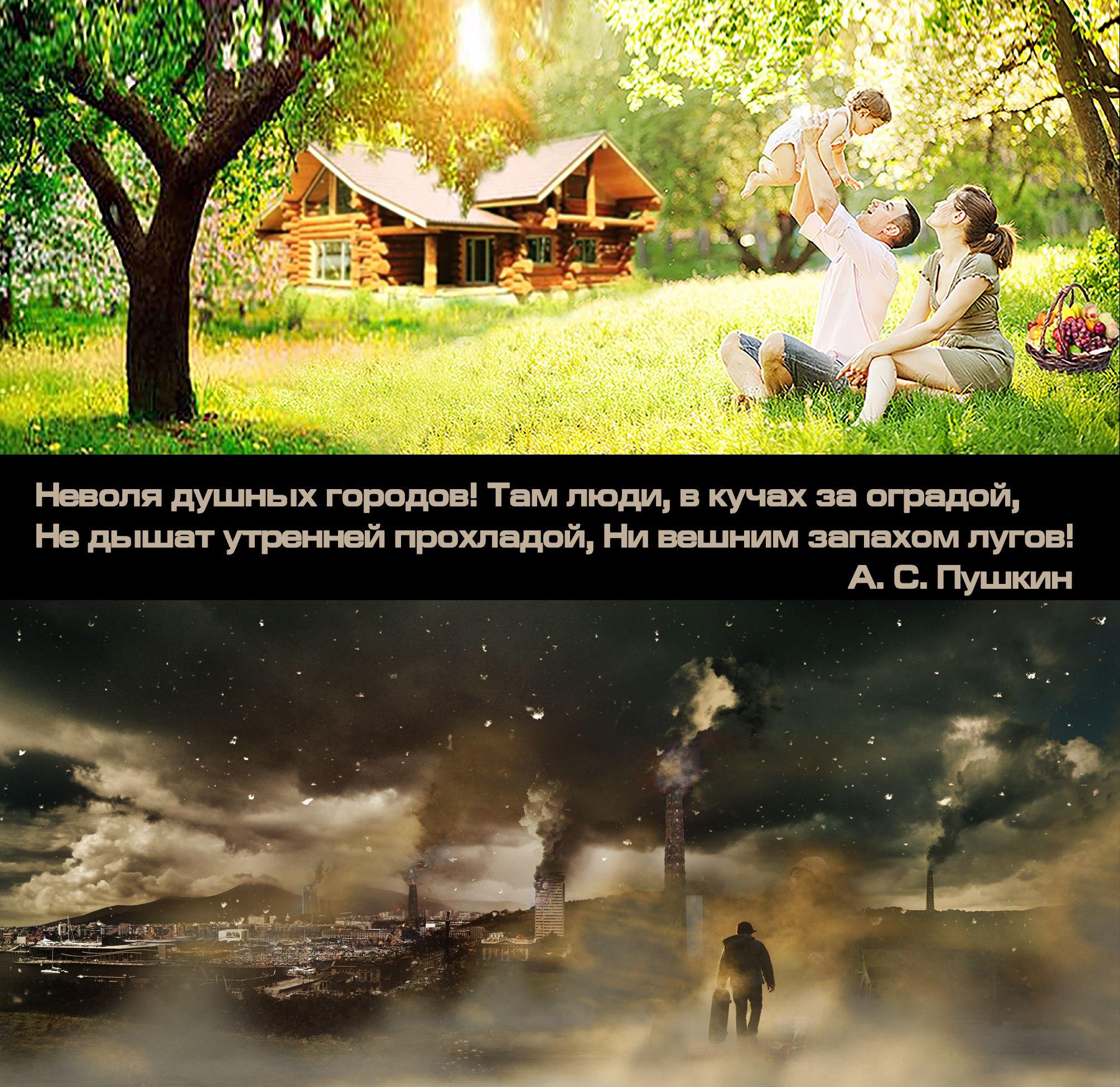 """5y5knankpcA - СветВМир.ру - Интересный познавательный журнал. Развитие познания - """"Не дышат утренней прохладой, ни вешним запахом лугов!"""" - А.С. Пушкин"""