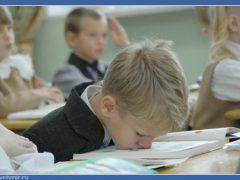 11 заблуждений о школе