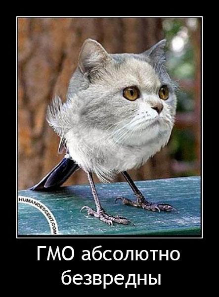 563 - СветВМир.ру - Интересный познавательный журнал. Развитие познания - ГМО в продуктах - признаки, список производителей, список продуктов