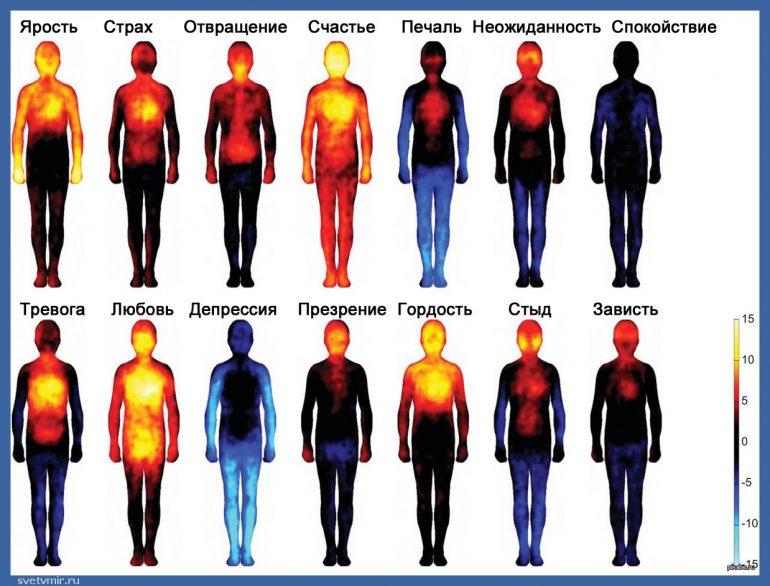 Тепловая карта, показывающая, как мы чувствуем эмоции