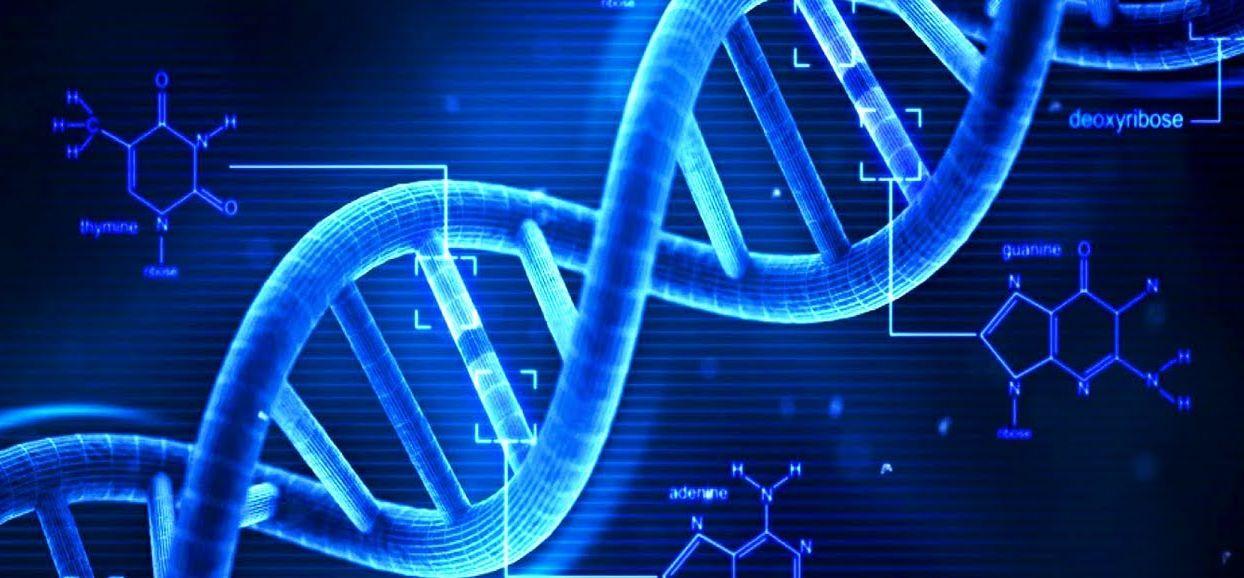 maxresdefault 1 - СветВМир.ру - Интересный познавательный журнал. Развитие познания - Факты о ДНК и стих про ДНК