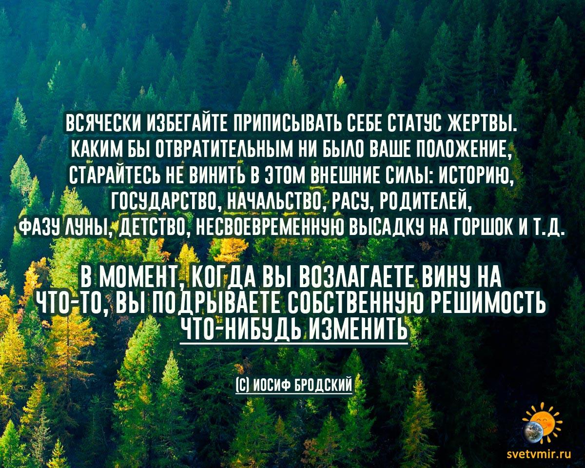 """brodsikj - СветВМир.ру - Интересный познавательный журнал. Развитие познания - """"Всячески избегайте приписывать себе статус жертвы"""" (картинка)"""