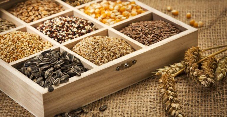 Как собирать и хранить семена