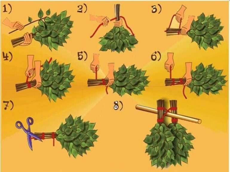 W6M6sShQUhQ - СветВМир.ру - Интересный познавательный журнал. Развитие познания - Как сделать веник для бани правильно